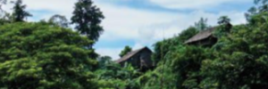 Security, justice and governance in south east Myanmar: a knowledge, attitudes and practices survey in Karen ceasefire areas
